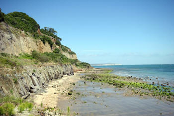 Luccombe beach, looking in the direction of Shankin